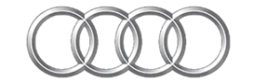 Audi car repair specialist